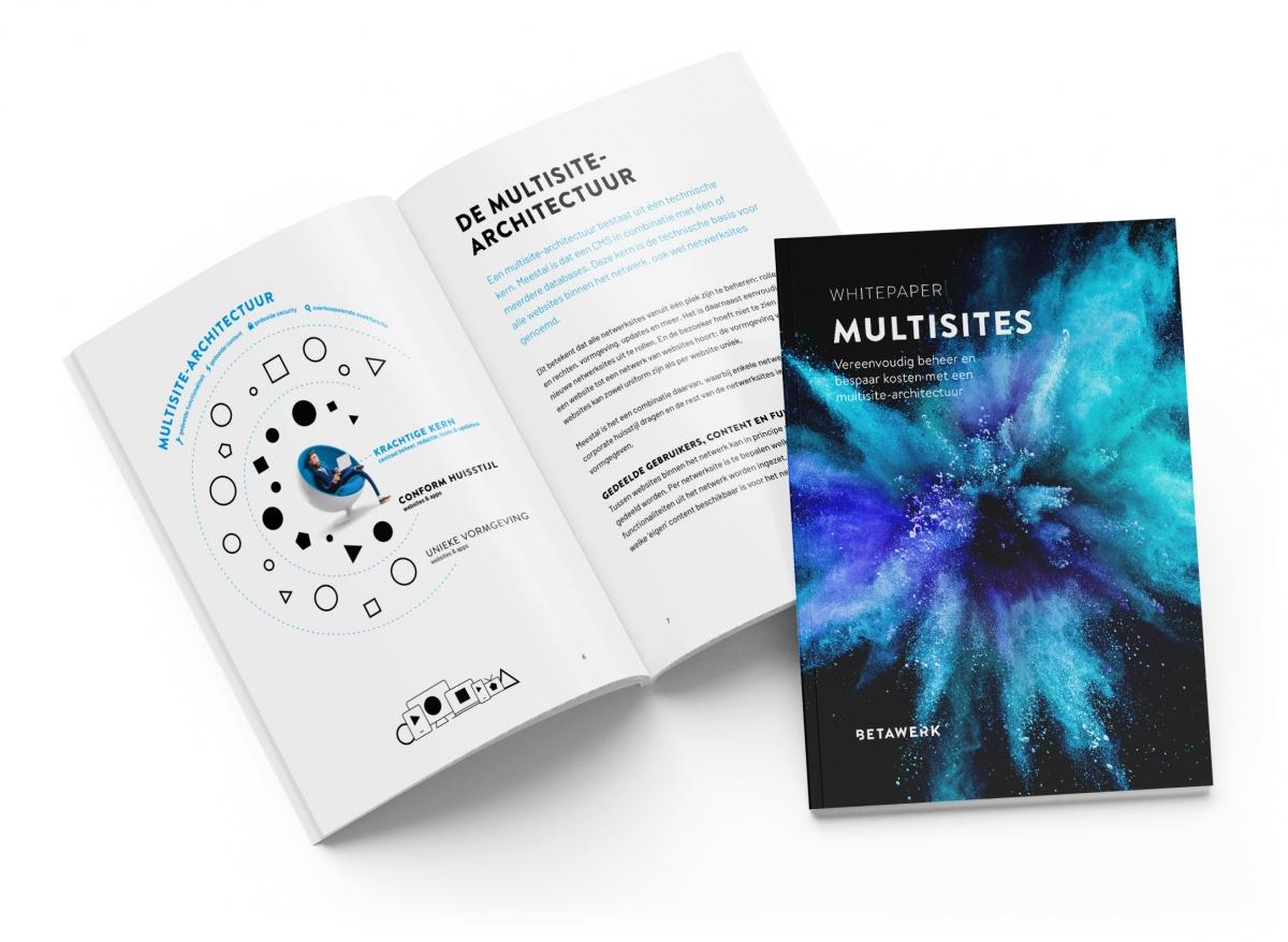 Whitepaper Drupal Multisites